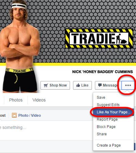 FacebookLikeaPageasyourPage