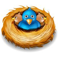 twiter-in-a-nest